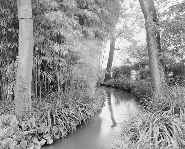 'Combray (Giverny I)', France (Haute-Normandie, 27 Eure), 2010, Heliogravure on hand made paper, 117 x 133 x 6 cm, edition of 12 + 3AP