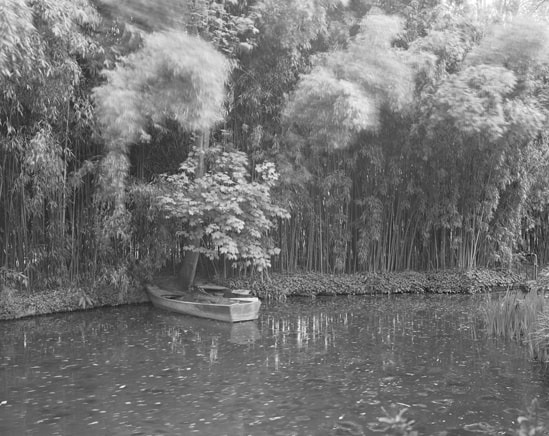 'Combray (Giverny V)', France (Haute-Normandie, 27 Eure), 2010, Heliogravure on hand made paper, 117 x 133 x 6 cm, edition of 12 + 3AP