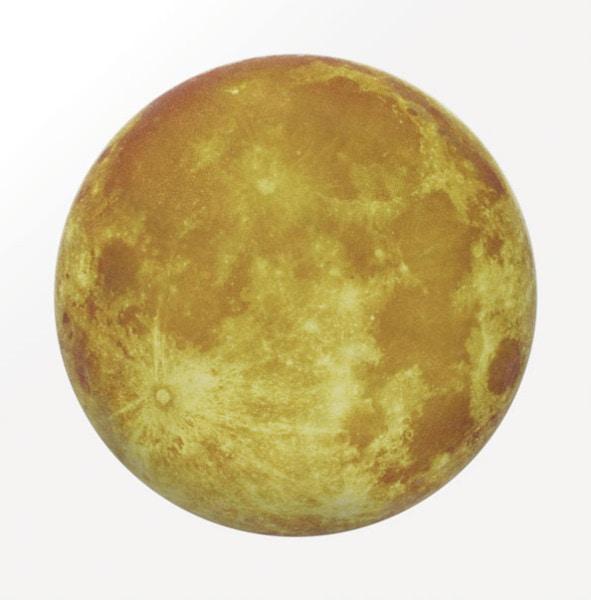 'La Planète Sauvage # 1: Terra Luna', 2009<br /> Sublimated vinyl, epoxy resin, glass spheres, lacquer and acrylic on convex wood disc, 120 cm diameter