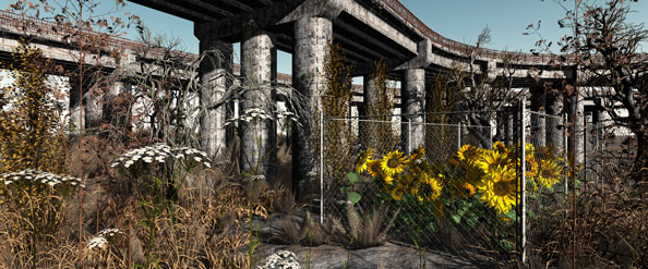 'Community Garden n.7', 2009, C-Print, diasec on Perspex