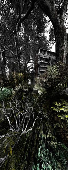 'Garden n.2', 2009, C-Print, diasec on Perspex