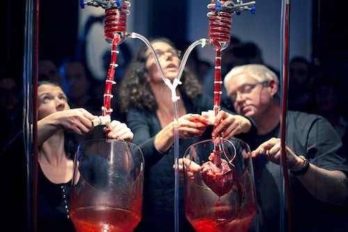 HELEN PYNOR and PETA CLANCY: The Body is a Big Place, 2013-14, 6 min 28 sec, edited video of pig heart perfusion performance, Science Gallery Dublin (Feb. 2013), sound by Gail Priest, Ed.5+2 AP