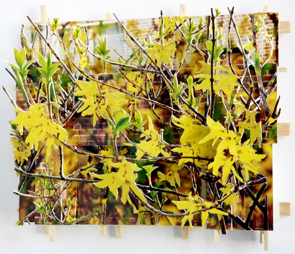 'Yellow Flowers', 2010, C-Print, wood, museum board, 28 x 23 x 10 cm