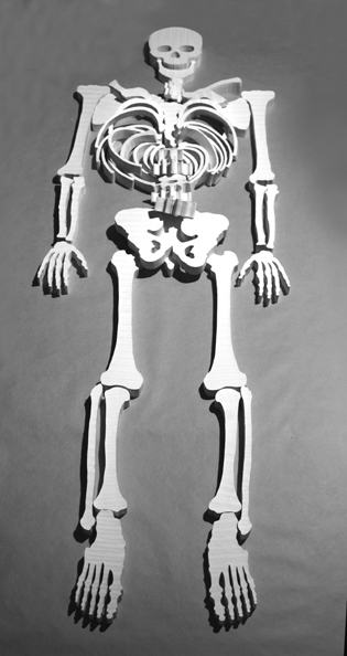 'Bones I', 2012, paper, glue, size variable, edition of 2