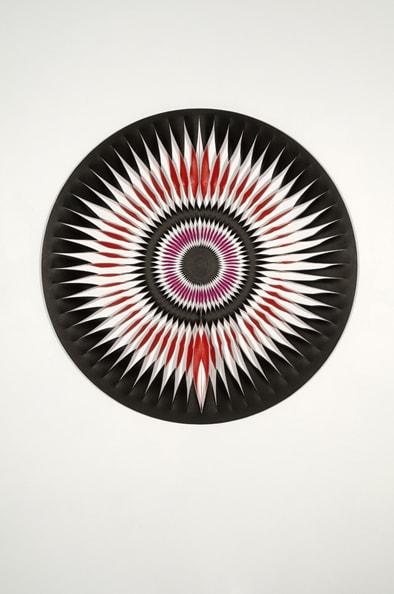 Liquid light Butterfly 11, 2010. Acrylic, canvas, timber, pins<br /> 115 cm diameter