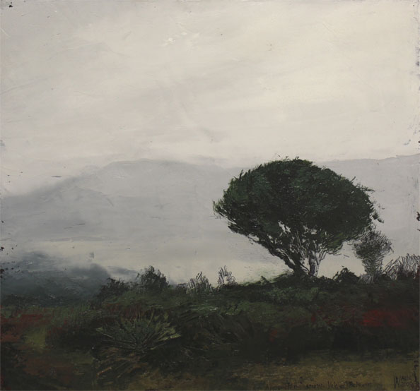'Approaching Snow; Vale of Belvoir', 2009, oil and beeswax on linen, 46 x 49 cm. <br /> Proceeds from this work go to the Tasmanian Land Conservancy Fund raiser for the conserving and managing the Vale of Belvoir.