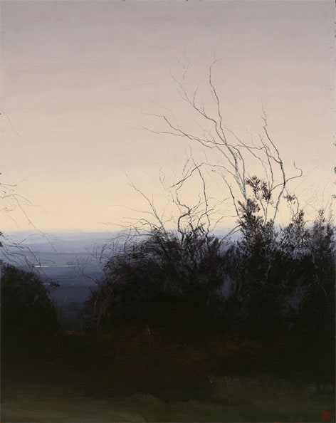 'Journey to the Source IV', 2009, oil & beeswax on linen, 200 x 160cm