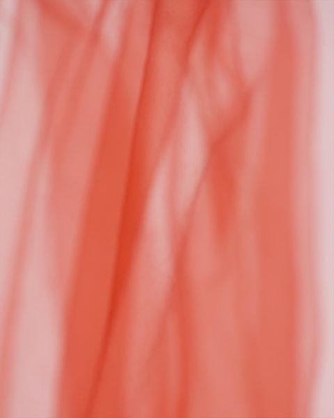 'Pound of Flesh Xl', 2018, Pigment print on Alupanel, 40 x 50 cm, Edition 3 + 1 AP
