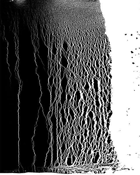 'Pound of Flesh lI', 2018, Pigment print on Alupanel, 40 x 50 cm, Edition 3 + 1 AP
