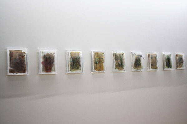 'Medicinal Plant Pages', 2016, plant matter, tulle, thread, pigments, shellac, bone, archival paper in acrylic box with mirror back, 34 x 25.5 cm framed