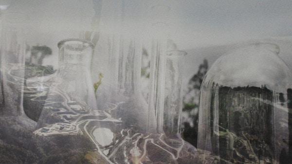 janet laurence artworks