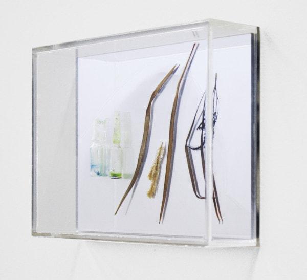 'Chlorophyll conversation I, 2013, mirror, acrylic, plants, glass, 16 x 21 x 5 cm