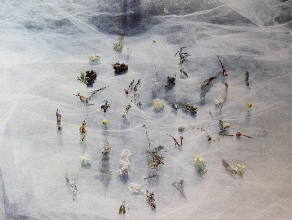 'Untitled', 2016, dye sublimation print,<br /> 60 x 79.5 cm