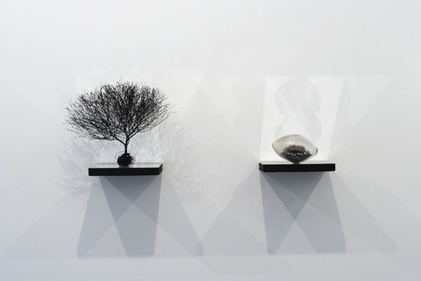 Natural History (Landscape and Residues Series), 2008, Glass vials, botanical specimens, wood, steel, polished aluminium mirror