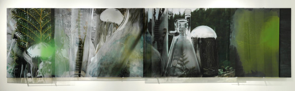 Forensic Sublime (Crimes against the Landscape series: Styx Valley), 2008, Duraclear, polished aluminium, acrylic<br />