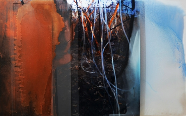 'Harvesting Dew', Duraclear on acrylic, mirror, earth and pigment in oil, 168 x 100 cm, 2011