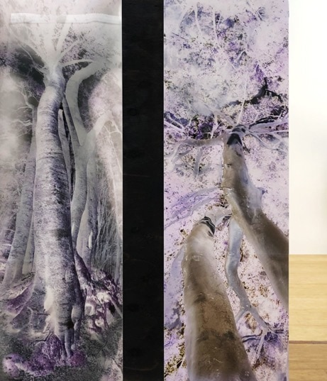 Seeping Out (After the Theatre of Trees) Diptych ,2019, dye sublimation archival print on Chromaluxe aluminium with paint and pigments, wood, mirror, diptych, 100 x 73 cm overall, edition of 3 + 1AP