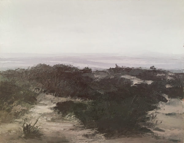 'Mound Study', 2001, oil and beeswax on linen, 62 x 79 cm