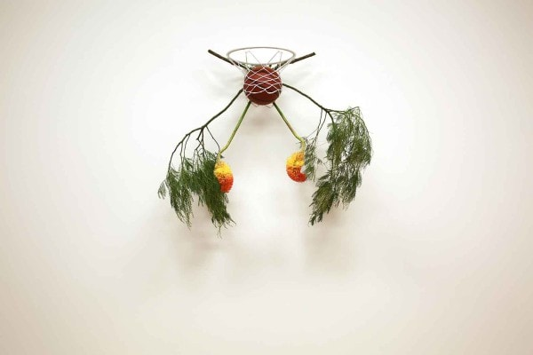 Untitled # 24 from the series the world is weary of me, and I am weary of it, 2015, basketball hoop and ball, wattle, red hot poker