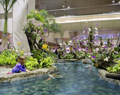 Orchid Garden Singapore Airport, 2003,<br />
