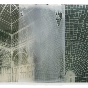 Janet Laurence, 'Botanical Residues (after the Great Glasshouse)', 2005, duraclear, photographs on acrylic, 100 x 150 cm